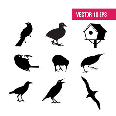Bird set,  birdhouse, flat icon, 10 eps vector, icon pack