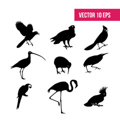 Birds set vector. crane bird, icon pack