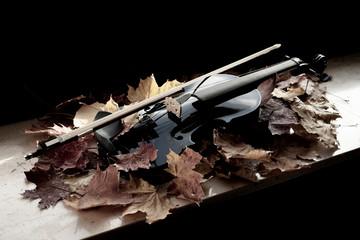 schwarze Violine in leicht welken Ahornblättern mit schwarzem Hintergrund