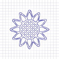 Sunflower, plant. Nature icon. Hand drawn picture on paper sheet. Blue ink, outline sketch style. Doodle on checkered background