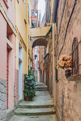 Street and houses in Manarola, Cinque Terre, Italy
