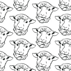 Vector pattern with hand drawn sheeps. Template for card, poster, banner, print for t-shirt.