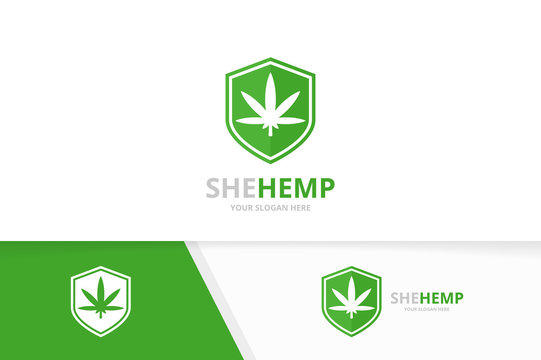Vector marijuana leaf and shield logo combination. Hemp and security symbol or icon. Unique cannabis and guard logotype design template.