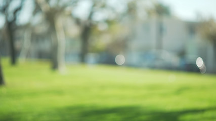 Out of focus background plate of beautiful suburban park and sunshine