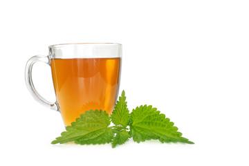 Nettle tea isolated on white background