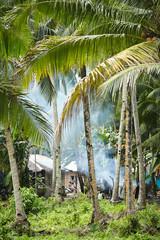 Bonfire in the jungle
