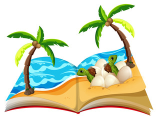Open book of turtle hatchlings