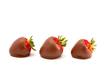 Chocolate Covered Strawberries on a White Background