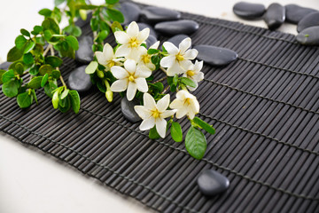 Printed kitchen splashbacks Spa spa setting on bamboo mat with lying on gardenia on black stones,