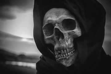 still life, Black and white, human skulls and bones digged on dry grass in the field which has dim light, Art and background.
