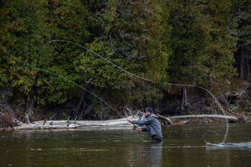Man fly fishing in the fall in a river casts his line