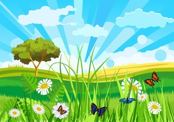 Summer meadow funny background vector illustration, green grass, butterflies, ladybug