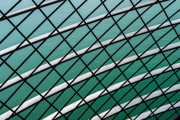 white and black net on green abstract background