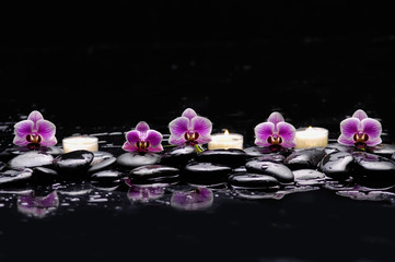 still life with pink orchid and white candle on black stones