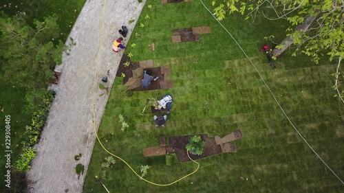 Drone 4k video of gardeners laying the grass lawn in the