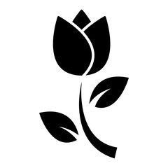 tulip flower silhouette vector
