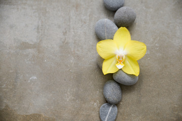 gray stones and yellow orchid on gray background