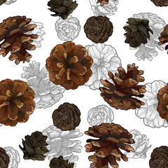 Pine cones seamless pattern isolated on white bacground.