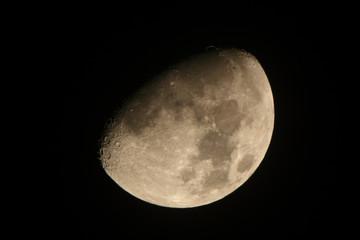 上弦の月:月齢10.4