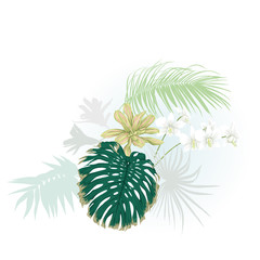 A composition of tropical plants, palm leaves