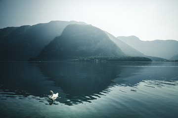 Fototapete - Magical image of the famous lake Hallstatt.