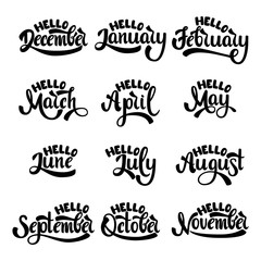 A set of month names. Hello January, February, March, April, May, June, July, August, September, October, November, December.  Handwritten Lettering. Text. Modern Calligraphy. Vector.