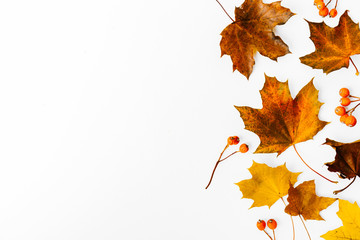 Autumn flat lay background on white Wall mural