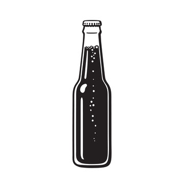 Bottle of beer or soda. Hand drawn vector illustration isolated on white.