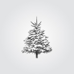 Hand Drawn Christmas tree under the snow Sketch Symbol isolated on white background. Vector of winter elements In Trendy Style