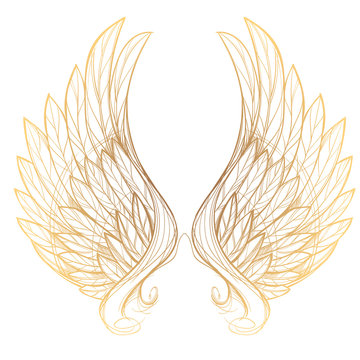 Vector illustration of golden wings, isolated on white background. Design element for emblem, sign, vintage style posters and more.