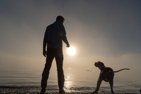 Silhouetted man and dog at the beach in heavy fog waiting to get his stick.