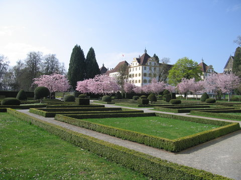 Heckengarten und blühende Kirchbäume Schloss Salem