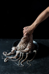 Crop hand holding octopus over plate