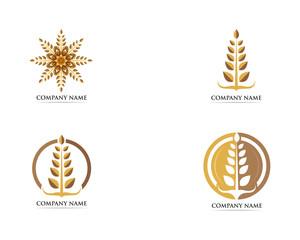 Wheat logo vector template