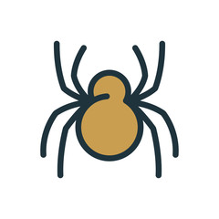 Spider Insect Minimal Color Flat Line Stroke Icon Pictogram