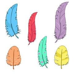 Set of multicolored vector feathers on white background