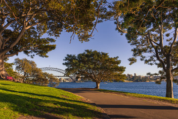 Mrs Macquarie's Point with the Harbour Bridge in distance, Sydney, Australia