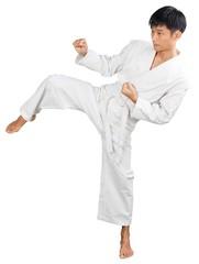 Portrait of an Asian Martial Artist Practicing