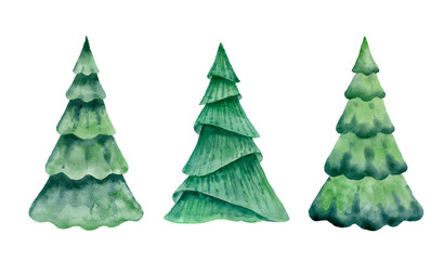 Christmas tree isolated on white background.Watercolor illustration..