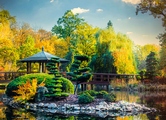 View on trees and bridge in old japanese garden in autumn time of season