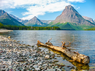 Poster de jardin Parc Naturel Two Medicine Lake and Mount Sinopah on background, Glacier National Park, Montana, United States.