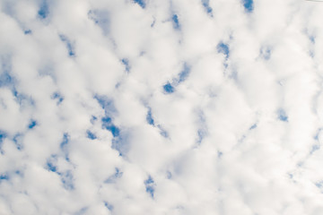 White clouds in the sunlight, background