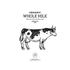 Farm cow vintage logo. Cow