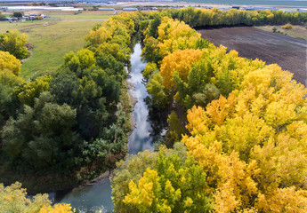 aerial view of a river, river, stream, water,Fall, season,autumn, reflection, trees,tranquil, yellow, green