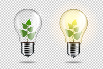 Light bulb with sprout inside plant, isolated.