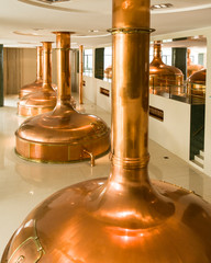 Copper vats in brewery