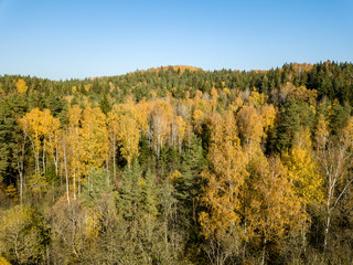 drone image. aerial view of rural area in autumn with yellow and red colored trees from above