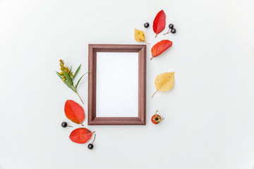 Autumn floral composition. Photo frame, berries, colorful leaves dogrose fresh flowers on white background. Autumn fall natural plants ecology fresh wallpaper concept. Flat lay, top view, copy space