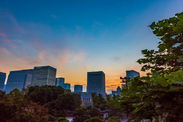 夜明けの高層ビル群 丸ノ内  The sky at daybreak in Marunouchi, Tokyo, Japan