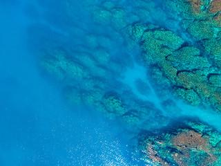 ブルー 海 珊瑚礁